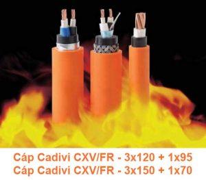 Cáp Chống Cháy CADIVI CXV/FR 3x120 + 1x95mm2, CXV/FR 3x150 + 1x70mm2