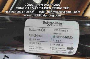 Cầu Chì Ống Trung Thế Schneider 24kV 31.5kA 63A