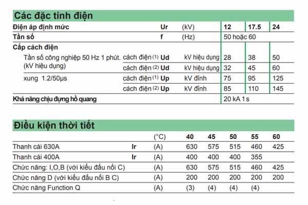 Thông số kỹ thuật tủ RMU Schneider RM6